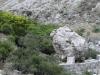 Курталиотское ущелье. Священный камень