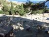 Монастырь Превели. Зоопарк