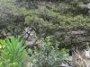 У ж.д. вокзала в Мачу-Пикчу